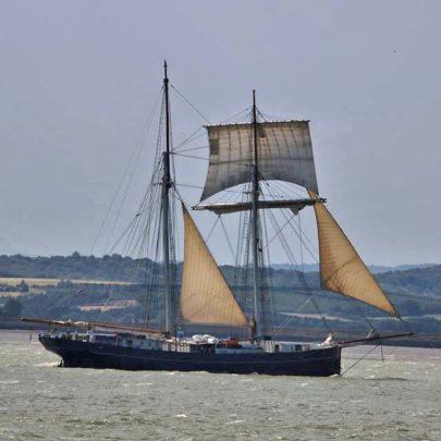 Under Sail | Jan Causton