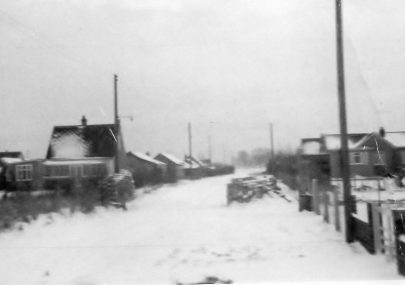 Snowy Canvey in 1963.