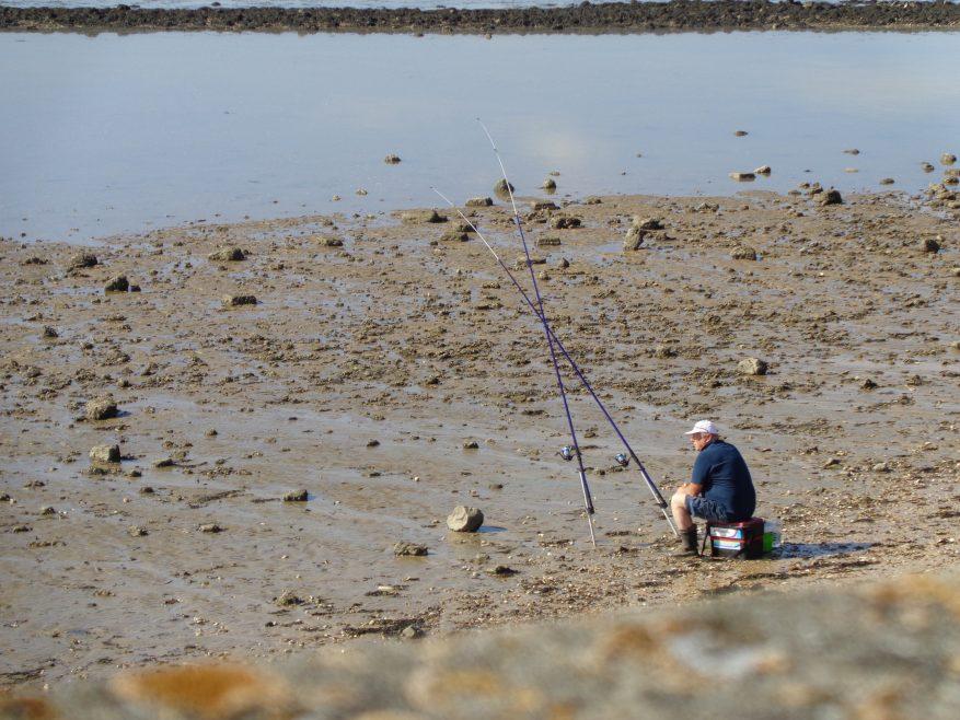 On  Concord beach. | J.Walden