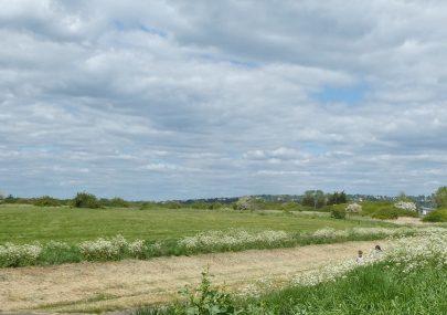 Field behind Dutch village