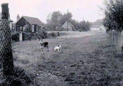 Wamburg Road 1950s
