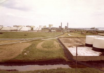 1969 Development of the site