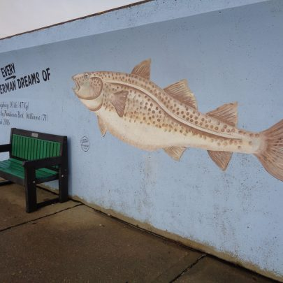 Angler's dream. | J.Walden