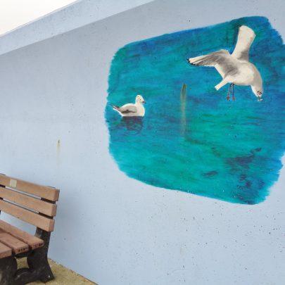 Seagulls. | J.Walden