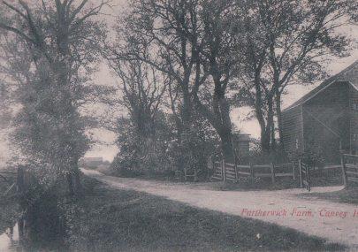 Walter Cox's Postcards