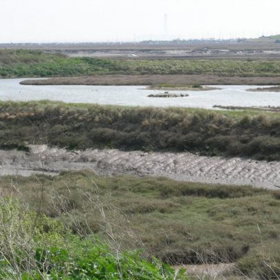 Walking to Leigh view across Benfleet Creek to Canvey | Janet Penn