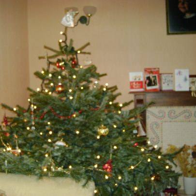 Our tree at day!