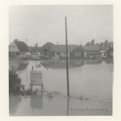 Billy Wells' pony field under water and awaiting development, looks suitable for 'house-boats'. | A.Stevens