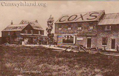 Cox's | David Bullock