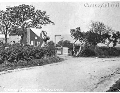Hill Farm to the North of the Dutch House | David Bullock