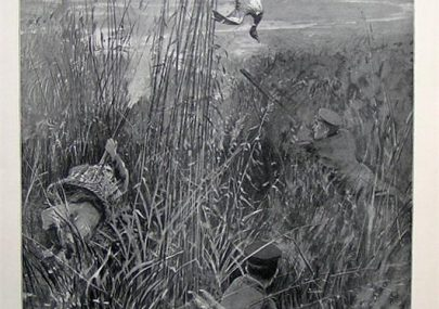 A Warm Corner - Wild Duck Shooting by H.C.Seppings Wright