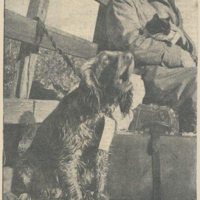 A young Harold Hart waiting evacuation in 1953