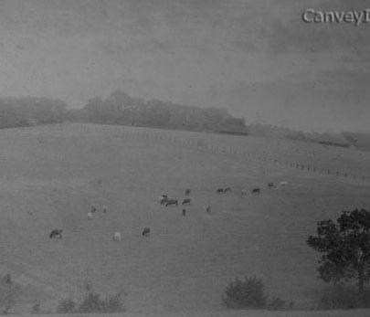 South Benfleet - 1895 | Richard & Barbara Kovelant