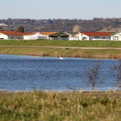 Smallgains Lake and Kings Homes | Carol McCracken