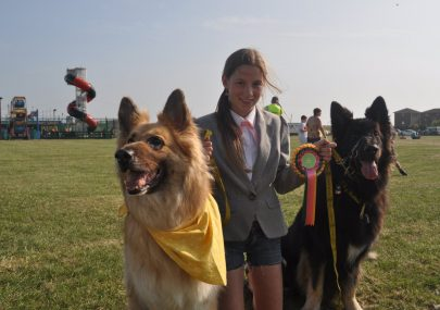 Festival and Dog Show