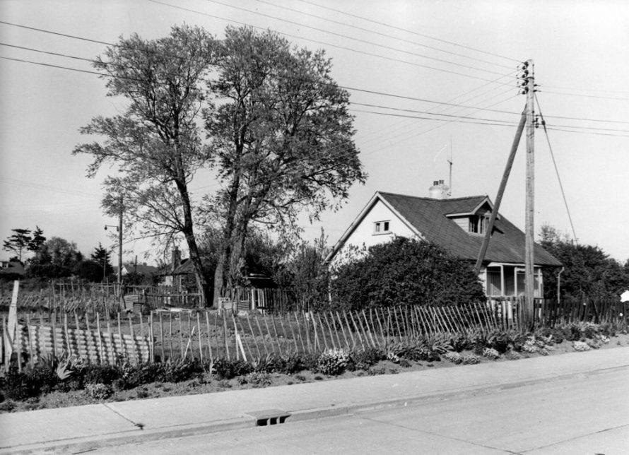 Land Dispute | Echo Newspaper Archive