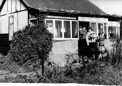 Canvey's Cats and Dog's Home