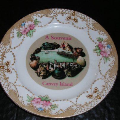 A Souvenir Plate (7