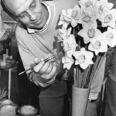 Canvey Horticultural Spring Show at the War Memorial Hall. Bob Burton carefully cleans his 1st prize mixed vase of Daffodils. Dated 1992   Echo Newspaper Group