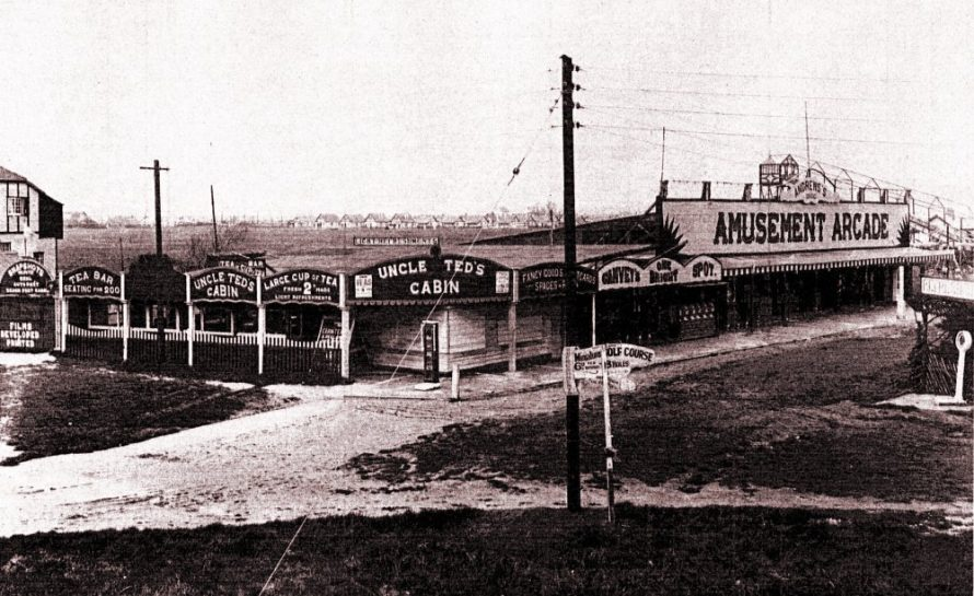 Uncle Ted's Cabin and Andrews Amusements