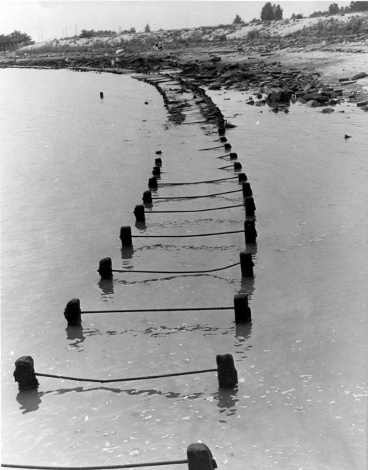 Thorney Bay dated 1981 | Echo Newspaper Group