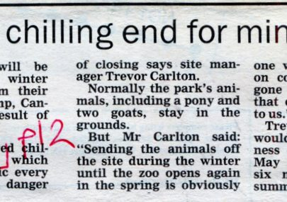 No Chilling End For Mini Zoo