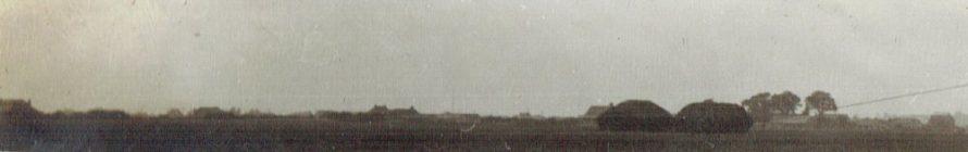 Canvey Farm 1920s