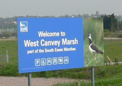 Canvey 2010