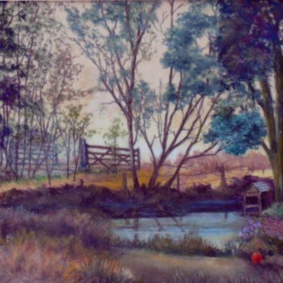 Pond at Dengie Flats | Dudley George