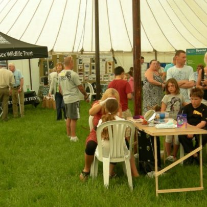 The Essex Wildlife Trust and face painting in the Marquee | Janet Penn