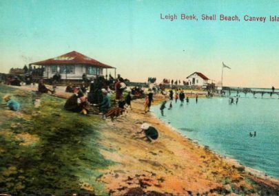 Shell Beach, Leigh Beek