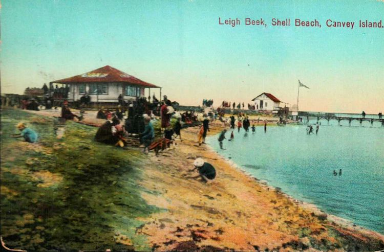 Shell Beach with Cox's cafe | Roger Thipthorp collection