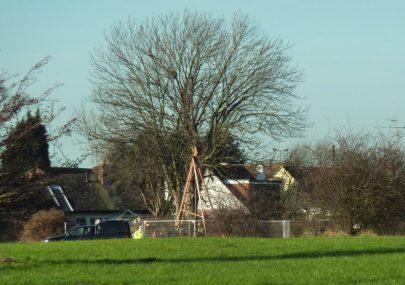 Persimmion 's Vermuyden Gate Estate