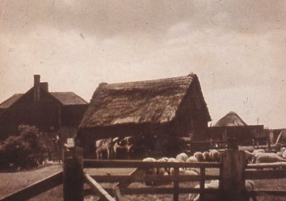 Scarhouse Farm