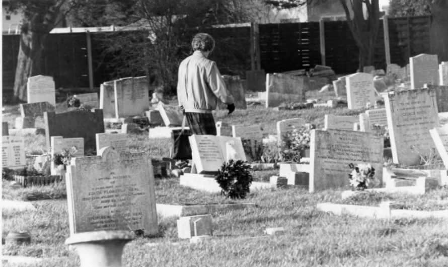 Grave Crisis 1995 | Echo Newspaper Archive
