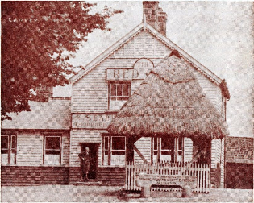 The former Village Pump, alas demolished and lost for ever these many years, with the Red Cow, before it was rebuilt, in the background. c1920