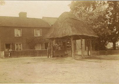 Old Canvey Photos c1904-6