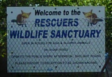 The Rescuers Wildlife Sanctuary