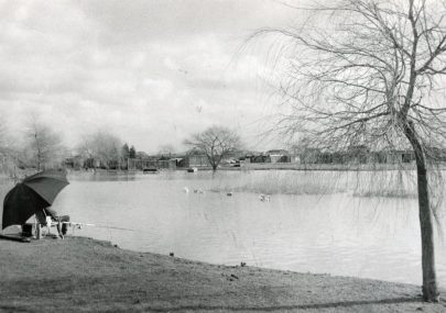 Newlands Camp Lake