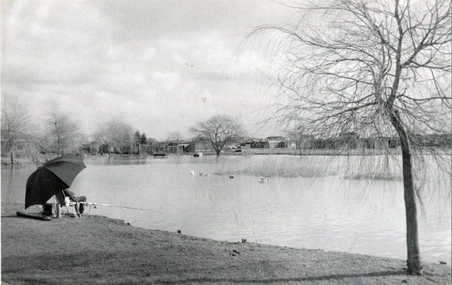 Newlands Camp Lake | Echo Newspaper Group