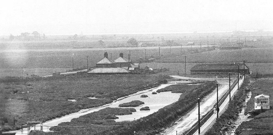 Early Bells Postcard