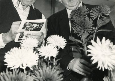 Canvey Horticultural Show