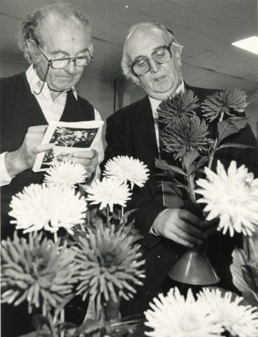 Canvey Horticultural Show   Echo Newspaper Archive