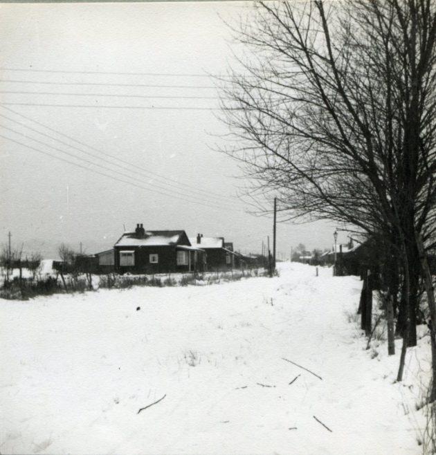 Wintry Wintergardens 1940s