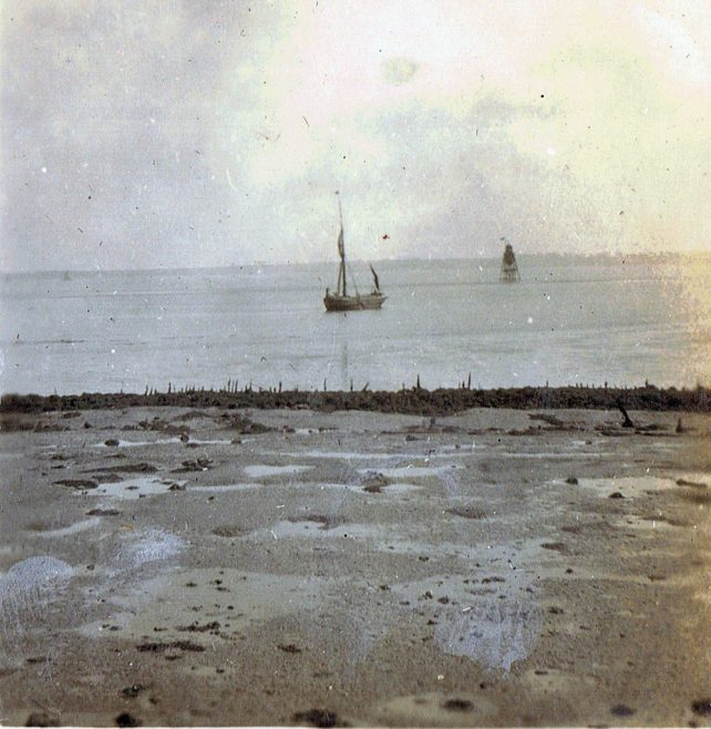 Great photo of the lighthouse with the remnants from the old Dutch seawall.   Dr S Cotgreave