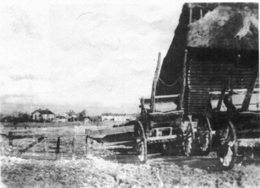Farming Scene Haven Road