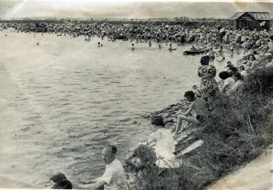 A very busy Thorney Bay