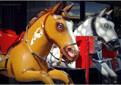 Casino Horses - Your Photos