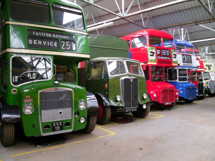 Some of the many buses   Janet Walden