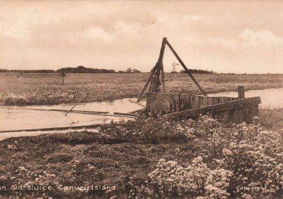 An Old Sluice, Canvey Island